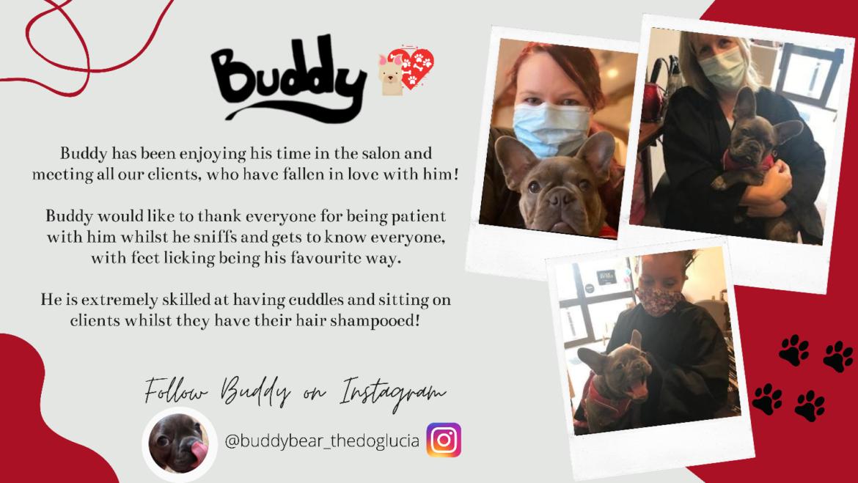 Buddy Says Thanks!